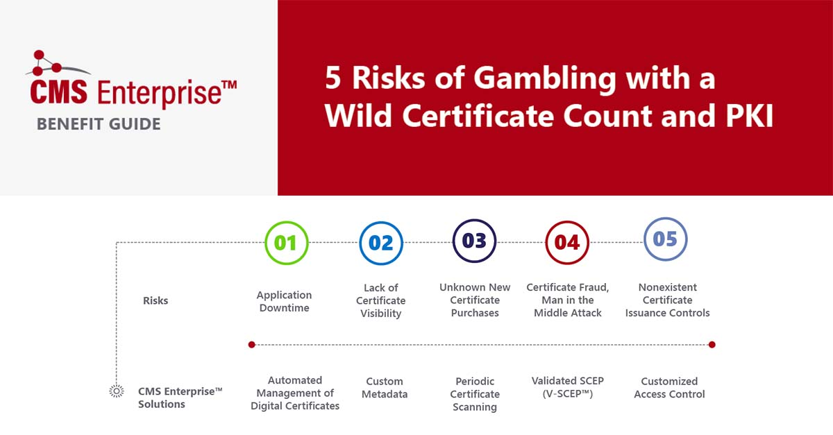 LFG Test_5 Risks
