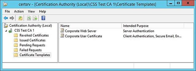 Hidden dangers certificate subject alternative names sans for Css certificate template